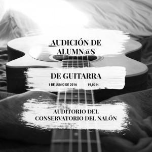 AUDICION GUITARRA